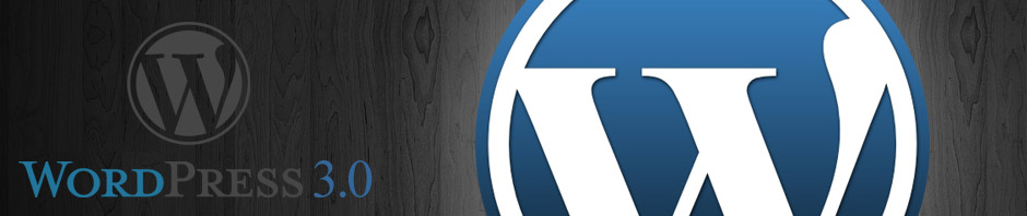 Wordpress3-featured-image